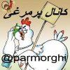 کانال تلگرام پرمرغی