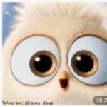 کانال تلگرام FUN.IR