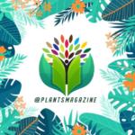 کانال تلگرام مجله گیاهان